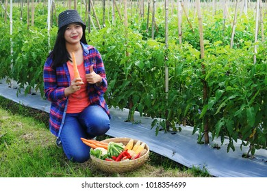 woman farming vegetable on field