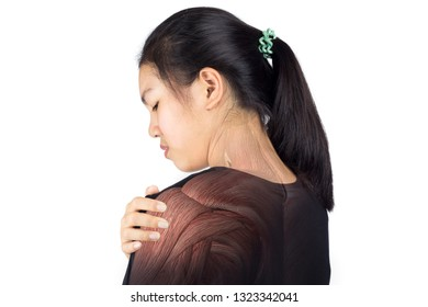 woman feel pain shoulder muscle injury white background