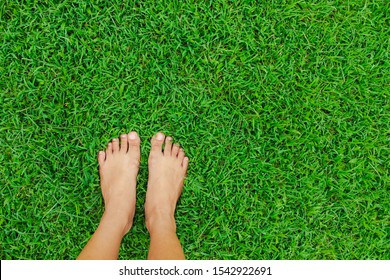 Woman feet on the green grass background