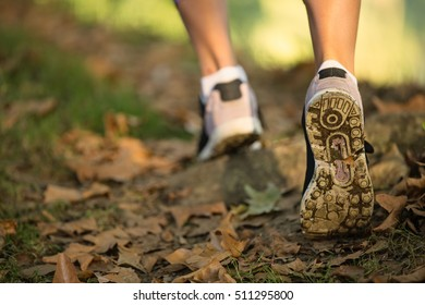 Woman feet in shoes on a forest path on sunset