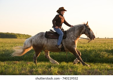 Woman / female cowgirl rider horse in low evening back light sun. sunset. Canter