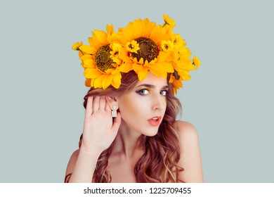 Woman with floral headband hand to ear listening in shock. Closeup portrait of Noisy Caucasian Fashion girl with crown from sunflowers on head hand to ear isolated on gray background with copy space.