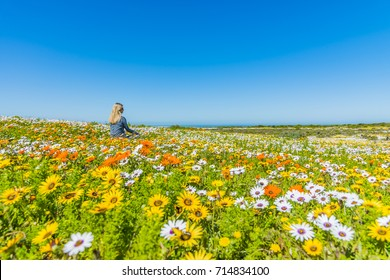 Woman in flower field - West Coast National Park - Cape Town - South Africa