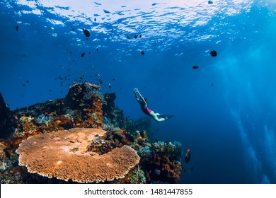 Woman freediver glides with fins at wreck ship. Freediving in blue ocean near wreck