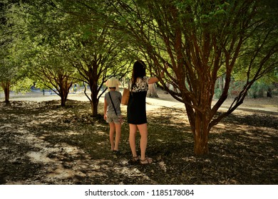 Woman and girl hitting jaboticaba in the park