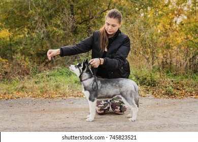 woman gives a command to her dog (puppy) Siberian Husky in the autumn park. Dog training.