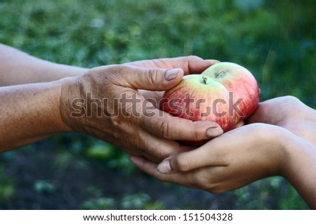 Woman giving girl apples from hands to hands in garden close up