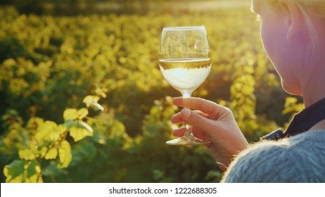 A woman with a glass of white wine stands near a vineyard, the sun illuminates her glass. Wine tour