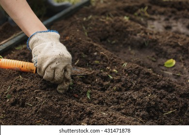 woman in gloves digs up the soil in the garden on a summer day