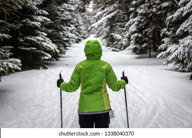A woman goes skiing in the Adirondack Mountains.