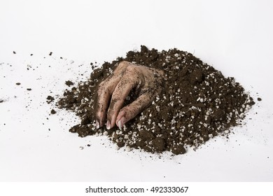 woman hand coming out of the earth