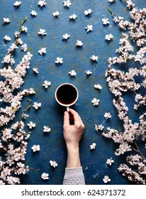 Woman hand hold cup of coffee, spring flowers with branches blossoming apricots on blue concrete background view from above. Flat lay style. Spring mood. Food art. Beautiful breakfast, top view.