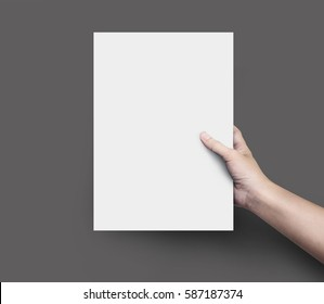 Woman hand holding blank paper sheet A4 size or design paper on black background.