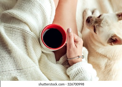 Woman Hand holding a cup of coffee in bed and next to it is a dog