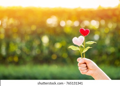 Woman hand holding a flower of heart on sunlight in the public park, for give supporting when people get who lack of desire with love concept.