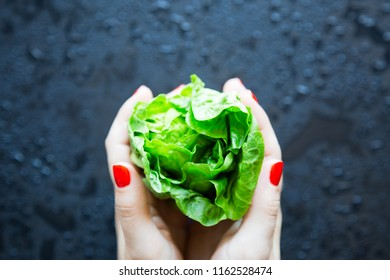Woman hand holding a fresh lettuce, selective focus