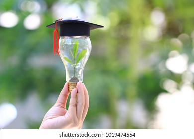 Woman hand holding green tree growing in light bulb with graduates hat on natural green background, Education concept