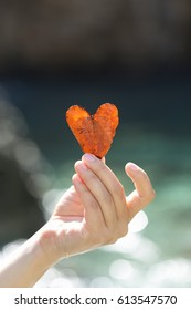 Woman hand holding heart shaped leave with rocks and sea blurred as background