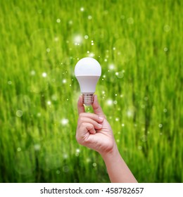 Woman hand holding LED bulb on green backgroud