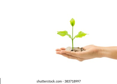 woman hand holding plant growing on coin isolated on white background,save money for prepare in the future,finance and money concept