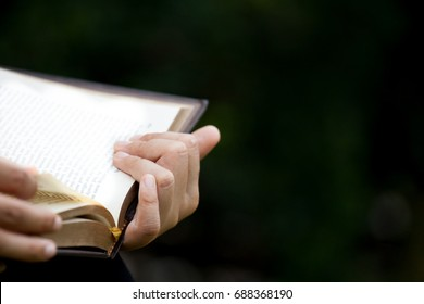 Woman hand holding and reading a book in the nature park