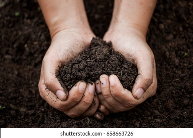Woman hand holding soil in heart shape for planting