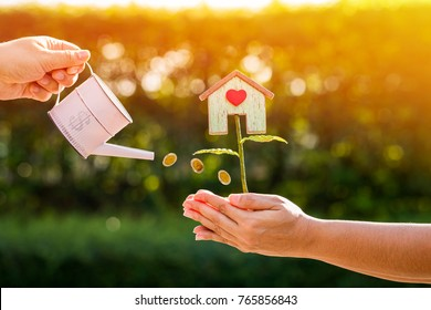 Woman hand holding a tank of coin watering to a tree of home with red heart on hand of man in the public park, Save money for buy house and real estate or loan for asset management investment concept.