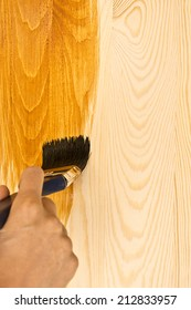 Woman Hand With Paintbrush on Wood