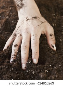 Woman with hand in planting soil