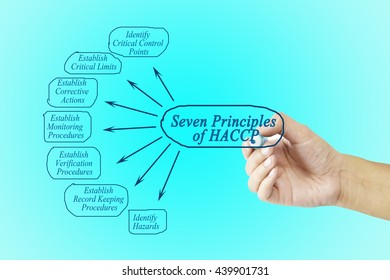 Woman hand pointing element of HACCP principle on blue background for used in manufacturing.
