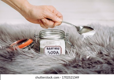 Woman hand pouring baking soda Sodium bicarbonate in long hair fur carpet for cleaning and stain removal. Natural home cleaners concept.