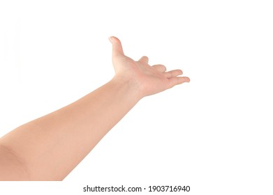 Woman hand showing something isolated on white background.