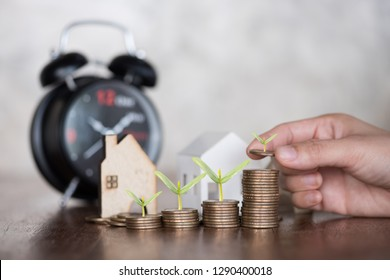 woman hand stacking dollars coins with a house model.save and investment for buy house concept .for the future.plant growing on coin.