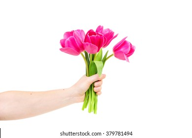 Woman hand with tulips flowers. Isolated on white