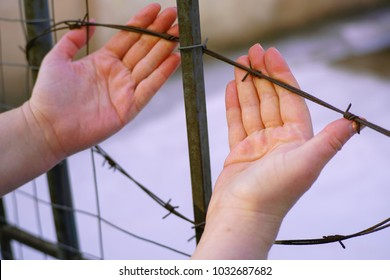 Woman hands and barbed wire. Refugee, prison, captivity concept