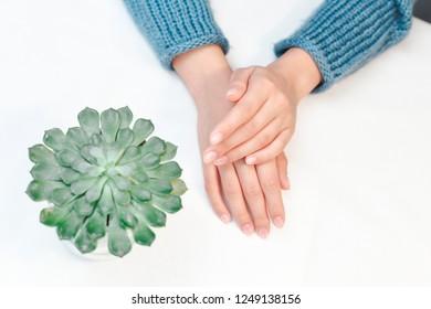 Woman hands care. Hands and spa relaxing. Beauty woman nails. Hands near green flowerpot succulent.