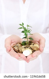 Woman hands with coins and plant