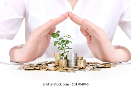 Woman hands with coins and plant isolated on white