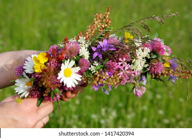 Woman hands in flower meadow preparing flower crown, close up. green gras background