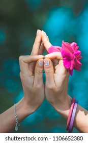 woman hands with flower in yoga mudra gesture outdoor in nature in front lake  closeup