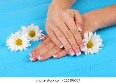 Woman hands with french manicure and flowers on blue wooden background