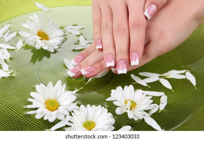 Woman hands with french manicure and flowers in green bowl with water