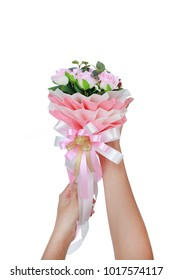 Woman hands holding artificial pink roses bouquet isolated on white background.