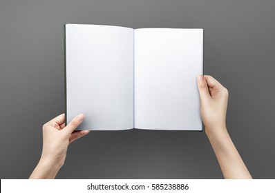 Woman hands holding a blank book for reader with copy space at grey background