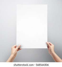 Woman hands holding blank paper sheet A3 size for Poster on grey background.