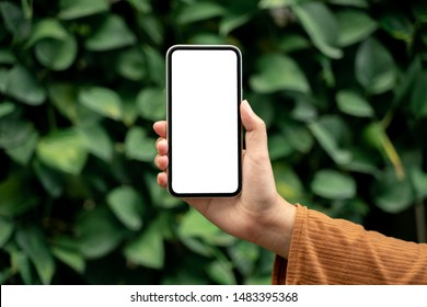 Woman hands holding blank screen mobile phone.