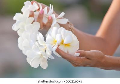 Woman hands holding Flower lei garland of white plumeria. Welcoming Lei on the hawaiian island. Plumeria flowers.