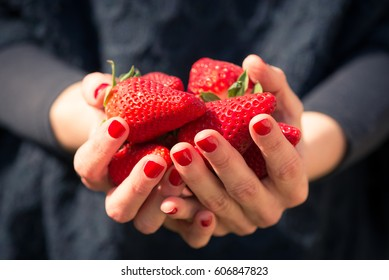 Woman hands holding fresh strawberries, red nails polish, dark clothes on background.