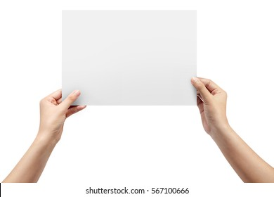 Woman hands holding gray paper blank a4 size on white background.