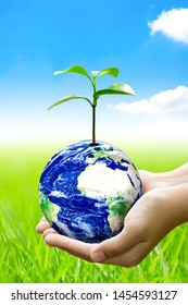 Woman hands holding world or globe above the field grass on earth day.Environment conservation and energy saving concept.Elements of this image are furnished by NASA.